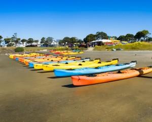 Kayaks Rentals